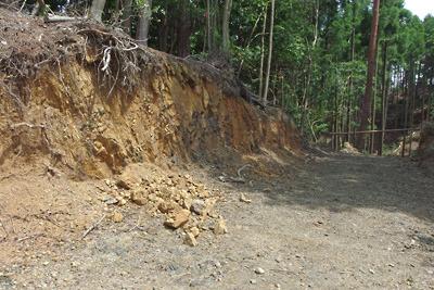 安祥寺山北尾根遺構の側面を破壊して通された林道とその崖面崩落箇所
