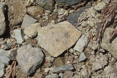 安祥寺山北の西谷遺跡で見つけた古代の灰釉陶器片