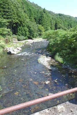 滋賀県北西部の山間を流れる、近年漁業権がなくなった清流河川