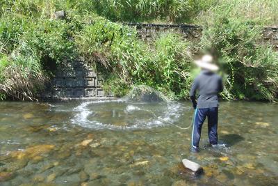 川のなかで投網を投げ、それが着水した瞬間。滋賀県西北部・石田川中流にて