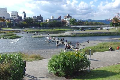秋晴れの賀茂川(鴨川)・高野川の合流部「デルタ」で憩う人々