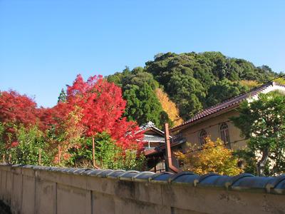 鹿ケ谷の「如意越」道から覗く旧藤井彦四郎邸「和中庵」の和洋の館や庭木の紅葉