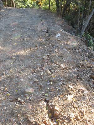 安祥寺山北尾根遺構傍の林野庁作業林道の路肩に生じた亀裂