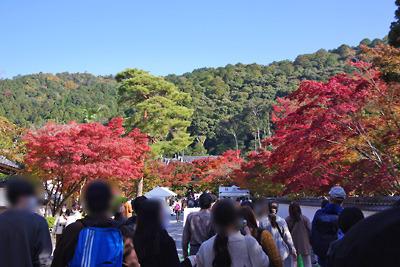 永観堂参観口の紅葉と中央右奥の検温所