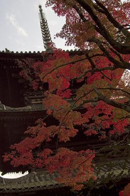 古い木造仏塔と楓紅葉
