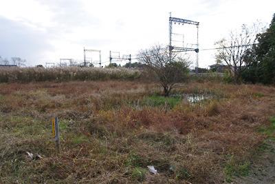 奈良郡山南部・旧東岡遊郭跡外れの湿地と近鉄線