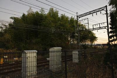 近鉄線で切断される大和郡山城総構の土居跡竹藪