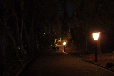 新型コロナ再流行により節分祭の露店が消え失せた、吉田神社境内の大元宮と本殿地区を結ぶ参道
