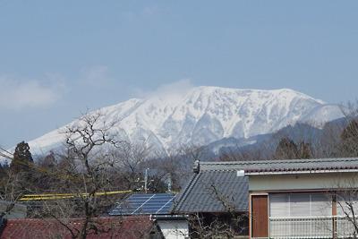 関ヶ原・藤古川河畔から見た雪を戴く伊吹山