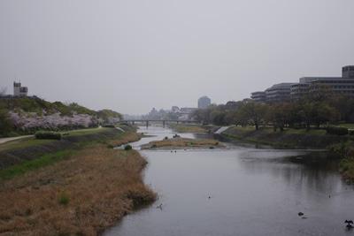 黄砂に煙る賀茂川(鴨川)の河原と桜並木(中央左)